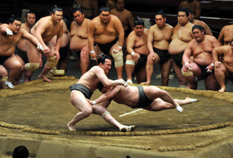 How to See a Sumo Match in Japan