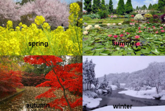 Japanese Year in Sync with the Seasons