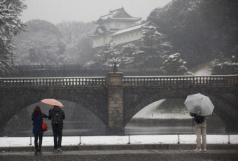 Tokyo Weather and Climate Conditions