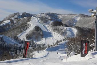 Top 10 Snowboarding Spots Near Tokyo
