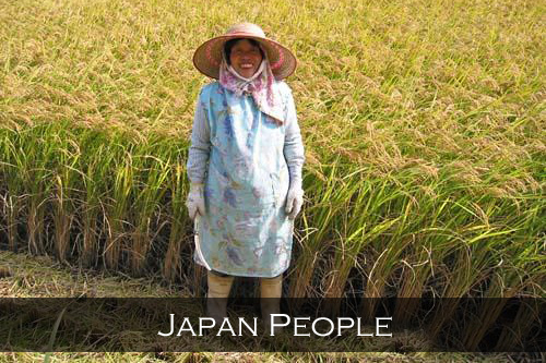 This year's crop, ready for harvest from a family rice plot in Okayama, Japan.