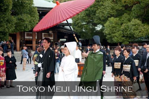 A traditional wedding ceremony at the Meiji Jingu Shrine. Harajuku, Tokyo, Japan