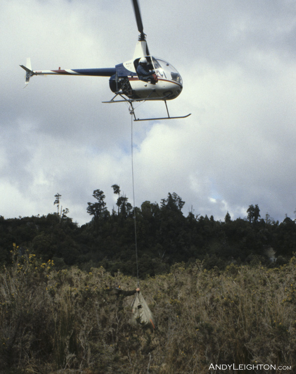 Dave McIlroy in his Robinson R22 helicopter picks up a single bale of sphagnum moss from the swamp. Marsden, Westland, New Zealand. Andy Leighton, ZH-HJM