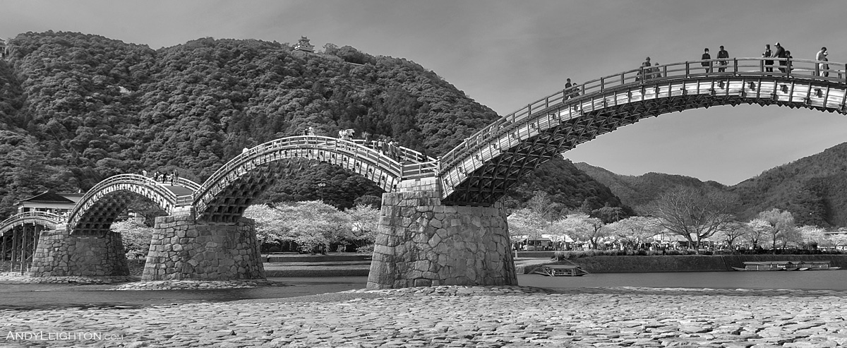 HDR of Kintai Kyo Bridge with pink cherry blossoms. Completely made of wood and without the use of any nails, the bridge consists of five arches onto massive stone pillars crossing over the Nishiki River. Iwakuni, Japan